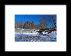 winter, snow, bridge, tree, nature, toledo, ohio, botanical, garden, landscape