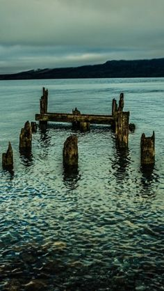 Wooden Piles - The iPhone Wallpapers