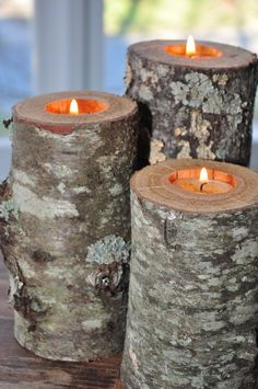 Re-purposed tree limbs into rustic, beautiful, natural wood candle holders that are the perfect centerpiece.