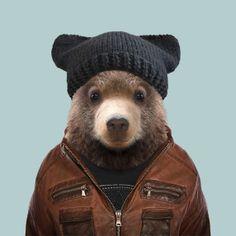 Kodiak Bear Cub - Yago Partal
