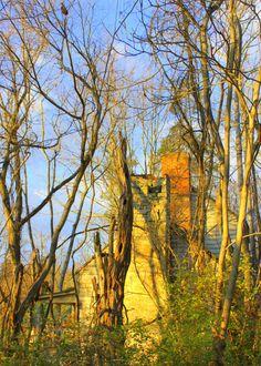 Abandoned house near the Natural Bridge in VA