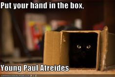 Put your hand in the box,  Young Paul Atreides