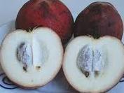 Velvet Apple - it's got furs