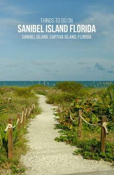 Best Things To Do In Sanibel And Captiva Islands Florida Captiva