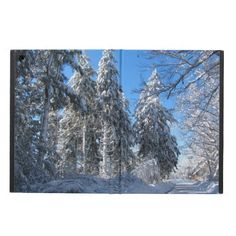 Winter Morning ~ Cover For iPad Air ~ The sun shines brightly on fresh snow at D W Field park Brockton, Massachusetts. The road invites us to venture further into the winter wonderland under a deep blue sky.
