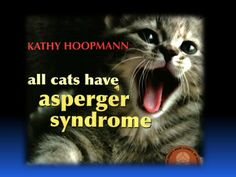 all-cats-have-aspergers-syndrome by Jo Ann Lee via Slideshare