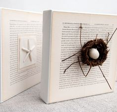 book page canvas nest. this is screaming Creswell Creswell Hendrick between the cute beachy one and the bird's nest AND the book pages Mini Canvas, Canvas Art, Canvas Frame, Altered Books, Altered Art, Book Crafts, Diy Crafts, Burlap Party, Art Projects