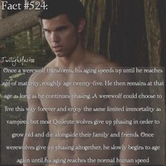 Twilight- Jacob will probably still keep phasing to stay with Rennesme Twilight Saga Quotes, Twilight Saga Series, Twilight Cast, Twilight New Moon, Twilight Series, Twilight Movie, Twilight Wolf Pack, Jacob Black Twilight, Twilight Pictures