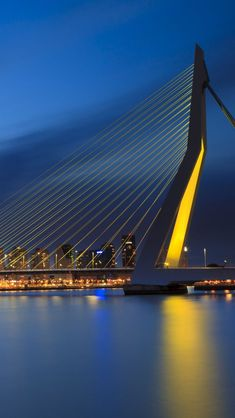 Erasmus bridge a. 'The Swan' in Rotterdam was designed by architect Ben van Berkel. Rotterdam, NETHERLANDS There's one in Israel and Redding, CA too, all with different names. Places To Travel, Places To See, Travel Destinations, Rotterdam Netherlands, Kingdom Of The Netherlands, Bridge Design, Oeuvre D'art, Utrecht, Beautiful Places