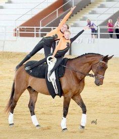 Sugargum Farm - Equestrian Vaulting