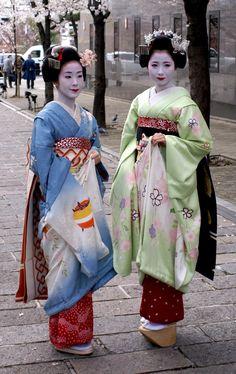 Maiko Takasuzu and Mamehana amidst the lovely cherry blossoms of Shimbashi Street.