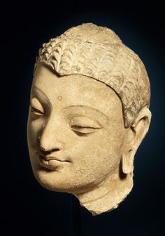 Head of a Buddha, Afghanistan, Gandhara region, Hadda, 4th-5th century. M.55.1. Anonymous gift. LACMA.