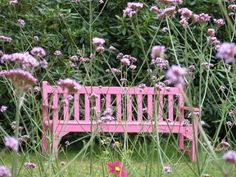 Pink bench color splash ~ by Ladee Pink Pink Love, Pretty In Pink, Pink And Green, Small Space Gardening, Garden Spaces, Splash Photography, I Believe In Pink, Pink Garden, Everything Pink