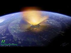 Miocene Meteorites and Uric Acid