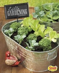 Edible Gardening: Growing Your Own Vegetables, Fruits, and More (Hardcover)