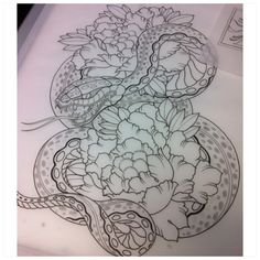 57 Best Snake Tattoo Images Snakes Drawings Snake Tattoo