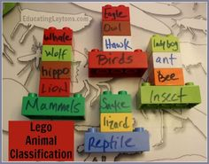 lego animal classification