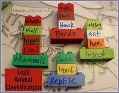 lego animal classification