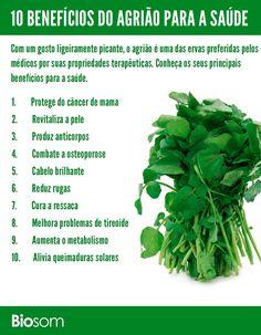 Acelere o seu metabolismo comendo salada de agrião. Você irá resolver problema de inchaço, gases e irá emagrecer mais rápido. Veja mais aqui clicando na imagem. #agriao #agrião #erva #verduras #salada #alimento #alimentação #alimentaçãosaudavel #bemestar #saúde
