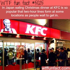 Japanese people love KFC on Christmas - WTF weird & interesting fun facts Fun Facts About Love, Love Facts, Wtf Fun Facts, Funny Facts, Random Facts, Crazy Facts, Random Trivia, Strange Facts, Random Things