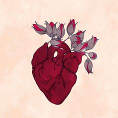 Animated gif shared by Anahi Guerrero. Find images and videos about love, gif and roses on We Heart It - the app to get lost in what you love. Arte Com Grey's Anatomy, Anatomy Art, Gif Animé, Animated Gif, Animated Heart, Gif Art, Anatomical Heart, Graphics Fairy, Animation