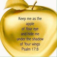 Keep me as the apple of Your and hide me under the shadow of Your wings ~ Psalm Biblical Quotes, Prayer Quotes, Bible Verses Quotes, Bible Scriptures, Faith Quotes, Spiritual Quotes, Prayer Verses, God Prayer, Religious Quotes
