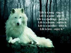 Life Is A Song - fantasy, abstract, animals, wolf Animal Spirit Guides, Wolf Spirit Animal, Lone Wolf Quotes, Promise Quotes, Wolf Pictures, Wolf Photos, Animal Pictures, Spiritual Advisor, Biker Quotes