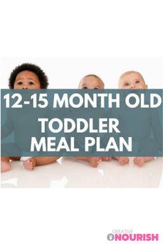 A Quick & Simple Toddler 12 - 15 Months Sample Meal Plan. #mealplan #toddlermealplans #toddlermeals #toddlerfoodideas #toddlerrecipe Toddler Dinner Recipes, Healthy Toddler Snacks, Toddler Meals, Healthy Kids, Kids Meals, Toddler Oatmeal Recipe, Meal Plan For Toddlers, Vegetable Recipes For Kids, Autumn Recipes Vegetarian