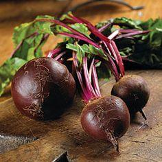 10 Easy Vegetables to Grow    Beets   MyRecipes.com