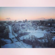 Love the morning view of @citywaterloo Park from our home :) #kwawesome