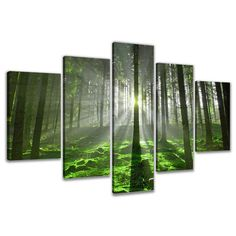 Found it at Wayfair.co.uk - Guadalupe Ridge Forest 5 Piece Photographic Print on Canvas Set