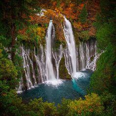 "Michael Shainblum on Instagram: ""The beautiful #BurneyFalls with some vibrant fall colors. #Shasta #California"""