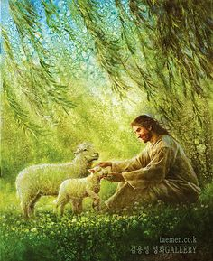 Jesus sitting under weeping willow tree with lambs. Yongsung Kim painting.