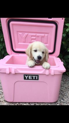 http://www.idecz.com/category/Yeti-Cooler/