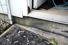 Jamb rot is a struggle for many homeowners. Learn how to fight back!