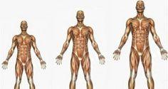 Hacer yoga aumenta tu estatura naturalmente  Lo creas o no, muchos expertos aseguran que si quieres aumentar tu estatura naturalmente deb...
