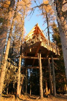 treetop house in Norway
