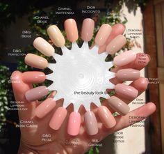 Nail color wheel