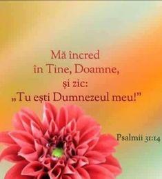 God Loves Me, Optimism, Forget, Bible