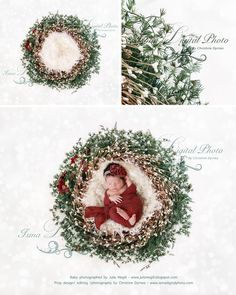 November special offer 90% off - Christmas newborn wreath - Digital backdrop - psd with layers