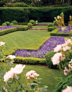"The salvia flower beds at Tory Burch's garden, by Noa Griffel, from the book ""Tory Burch In Color"""