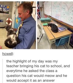 I love this teacher >>> LOOK AT THE CAT'S EYES AND THE LITTLE FEETS OH MY GOODNESS I CANT HANDLE THSI SOMEONE HENLP
