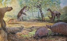 Image result for cenozoic south america