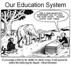 EDUCATION: Time to stop and think about our system...time to think about our future...