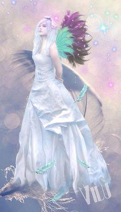 Fallen Feathers - Virginia  Lucia