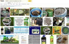 органические удобрения #органические_удобрения_настойки на воде и своем соке