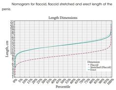 Penis Growth Chart