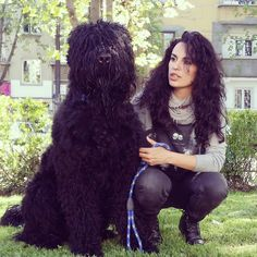 Kron & Mimolena #black russian terrier