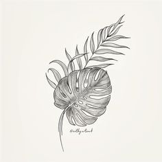 You are in the right place about Palm leaves hand drawn illust - Botanisches Tattoo, Make Tattoo, Tattoo Drawings, Finger Tattoos, Leaf Tattoos, Sleeve Tattoos, Men Flower Tattoo, Flower Tattoo Designs, Future Tattoos