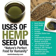 """uses of hemp seed oil   """"nature's perfect food for humanity""""   heart disease   heart health   acne   psoriasis   eczema   smother, thicker hair   cancer   cardiovascular diseases   good source of gamma-linolenic acid (GLA)   pre-mentstrual tension   rich in Omega-3 and Omega-6, and Omega-9   anti-inflammatory   moisturize your skin   natural sunblock"""